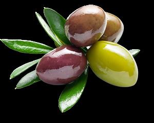 olives_casa_molon
